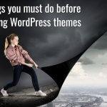 17-things-must-do-before-switching-wordpress-themes
