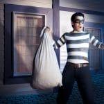 Thief-burglar